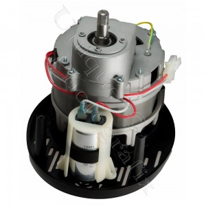 Appliance Motor